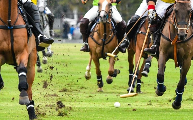 Horses running during polo match.