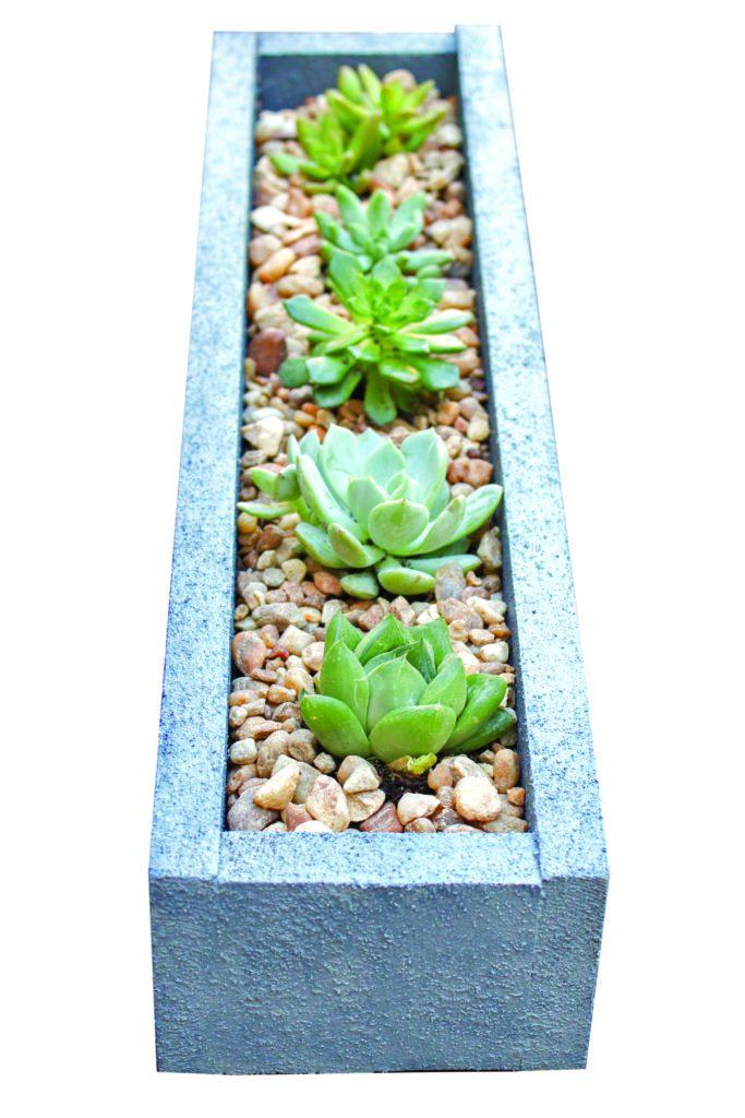 Erin Spain - DIY Succulent planter